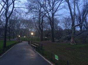 pre-dawn Central Park